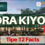 Zora Kiyomi Tipe 12 Quick Facts