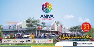Aniva Junction Tenant