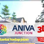 Aniva Junction 3D Video