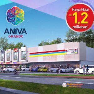 Aniva Grande Segera launching